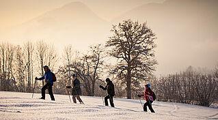 Schneeschuhwandern Kaiserwinkl, (c) Tourismusverband Kaiserwinkl