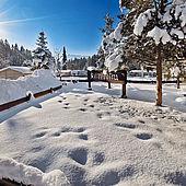 Wintereindrücke vom Eurocamp in Kössen